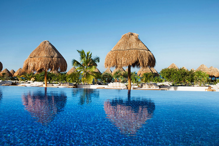 beloved hotel mexico large pool exotic trees