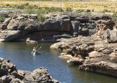 Bushmans Kloof Retreat Offers Kayaking as an Outdoor Activity