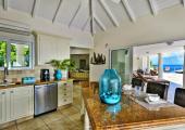 tropical indoor design kitchen