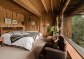wooden style hotel room with view to forest