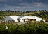 wine tourism modern hotel