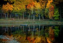 autumn with yellow trees at canoe bay near chicago